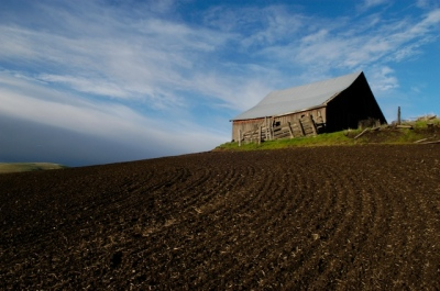 Morning Glow on Barn by Gary Hamburgh - All Rights Reserved