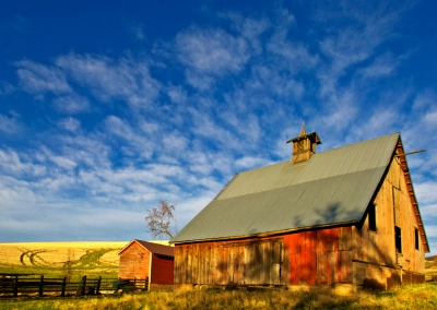 Afternoon Sun Lights Barn by Gary Hamburgh - All Rights Reserved