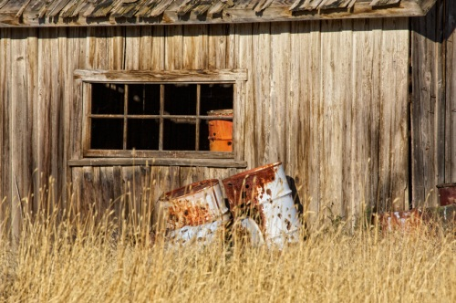 Old Cabin Closeup by Gary Hamburgh - All Rights Reserved