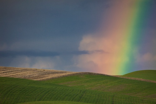 Rainbow in the Palouse by Gary Hamburgh - All Rights Reserved