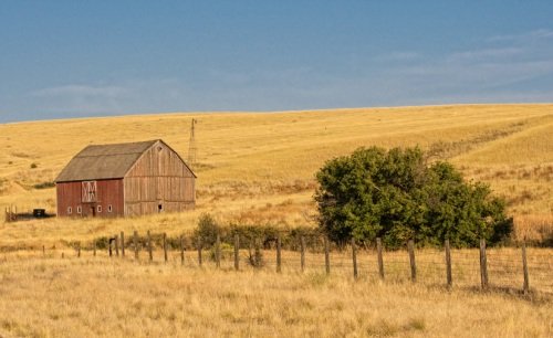 Red Barn with Fence by Gary Hamburgh - All Rights Reserved - ISO 250  f/11  1/500  120 mm