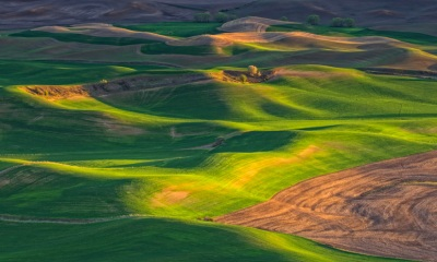 Evening Light in the Palouse by Gary Hamburgh - All Rights Reserved