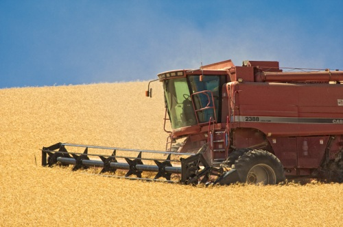 Red Combine by Gary Hamburgh - All Rights Reserved - ISO 200  f/10  1/500  400 mm