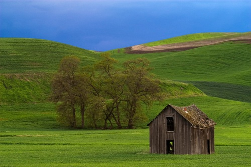 Small Barn in the Evening by Gary Hamburgh - All Rights Reserved