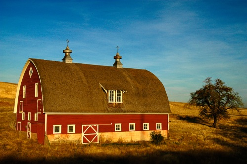Morning Glow on Winn Barn by Gary Hamburgh - All Rights Reserved