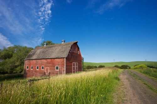 Red Barn near Dirt Road by Gary Hamburgh - All Rights Reserved