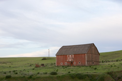 Red Barn in Flat Light by Gary Hamburgh - All Rights Reserved