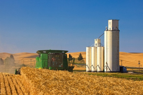 Harvesting near a Grain Elevator - Copyright Gary Hamburgh 2009 - All Rights Reserved