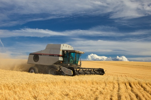 Gleaner Combine 2 by Gary Hamburgh - All Rights Reserved