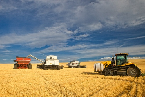 Gleaner Combine 1 by Gary Hamburgh - All Rights Reserved