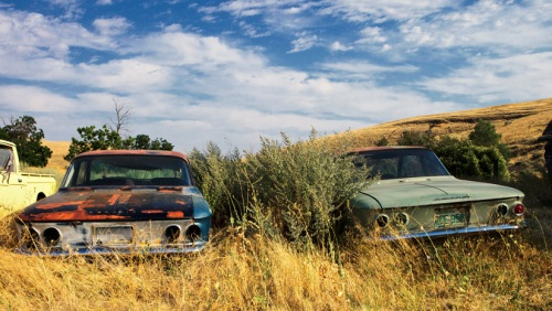 Corvair Pair - Copyright Gary Hamburgh 2009 - All Rights Reserved