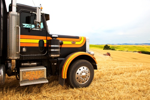 Truck Fills the Landscape - Copyright Gary Hamburgh 2009 - All Rights Reserved