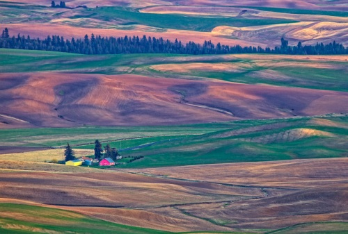 GHamburgh_MG_2218-Farm-in-the-Palouse