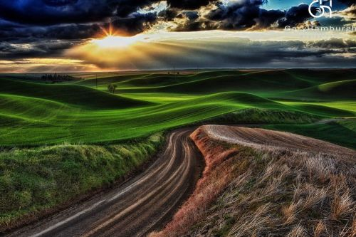 GHP-Palouse-Light-FarmRoad